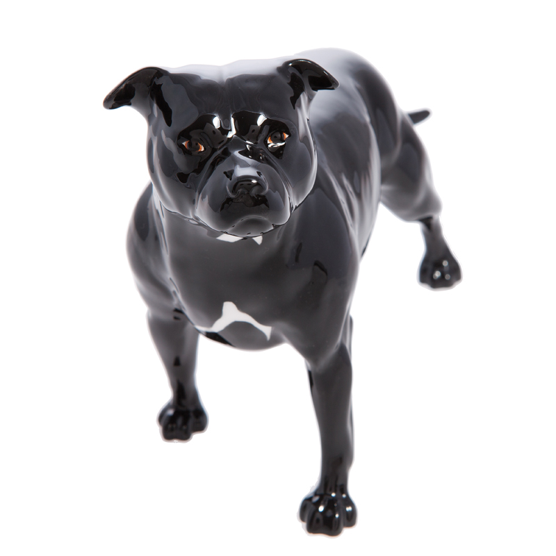 Staffordshire Bull Terrier Black Connoisseur Dogs By